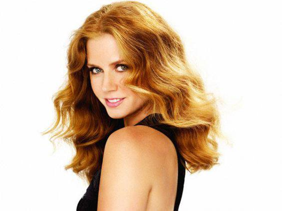 The Danish chamber presented a plaque issued on New Year's Day 2013 to actress Amy Adams.